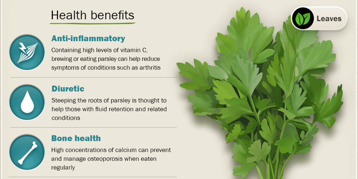 Parsley Benefits F