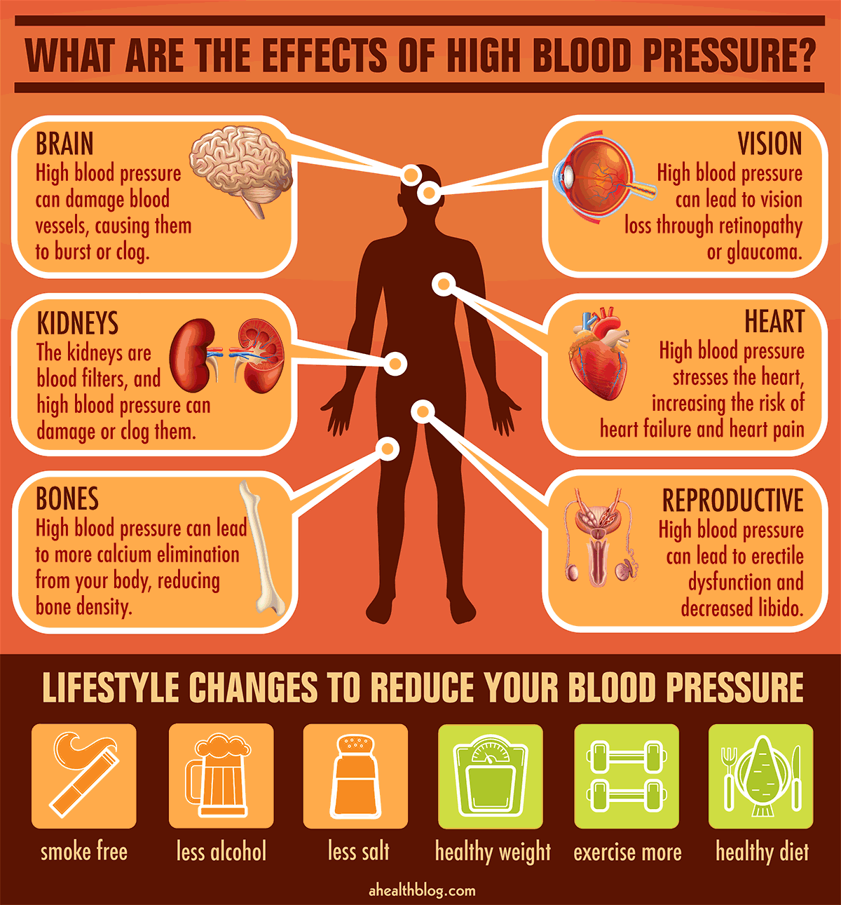 Need For Blood Pressure Meds Can Be Reduced With Lifestyle